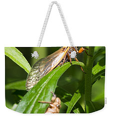 Weekender Tote Bag featuring the photograph 17 Year Itch by Rebecca Sherman