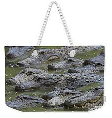 American Alligator Weekender Tote Bag by Mark Newman