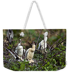 Baby Anhinga Weekender Tote Bag by Mark Newman