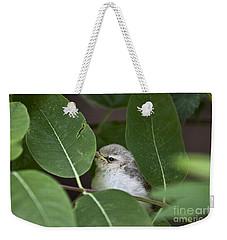 Baby Bird Peeping In The Bushes Weekender Tote Bag