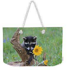 Baby Raccoon Weekender Tote Bag by M. Watson