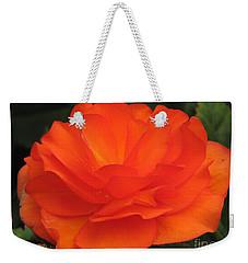 Begonia Named Nonstop Apricot Weekender Tote Bag by J McCombie