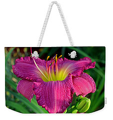 Weekender Tote Bag featuring the photograph Bela Lugosi Daylily by Suzanne Stout