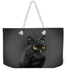 Black Cat Weekender Tote Bag by Peter Lakomy