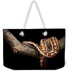Blood Python Python Brongersmai Weekender Tote Bag by David Kenny