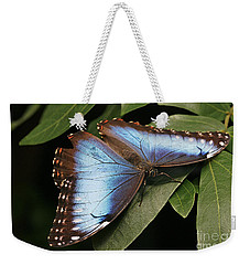 Blue Morpho Butterfly Weekender Tote Bag