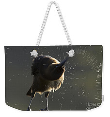 Boat Tailed Grackle Weekender Tote Bag by Meg Rousher