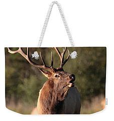 Bugling Bull Elk Weekender Tote Bag