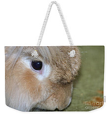 Weekender Tote Bag featuring the photograph Bunny by Debbie Stahre