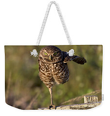 Burrowing Owl Photograph Weekender Tote Bag by Meg Rousher