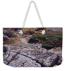 Cadillac Mountain Weekender Tote Bag