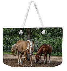 Curiosity Weekender Tote Bag