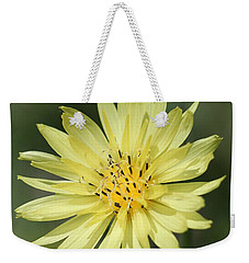 Weekender Tote Bag featuring the photograph Dandelion by Ester  Rogers