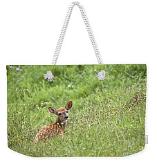 Fawn Weekender Tote Bag by Jeannette Hunt