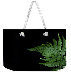 Weekender Tote Bag featuring the photograph Fern II by Alana Ranney