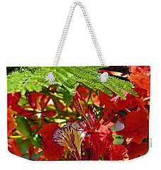Weekender Tote Bag featuring the photograph Flamboyan by Lilliana Mendez