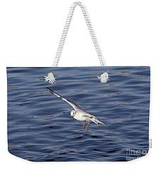 Flying Gull Weekender Tote Bag