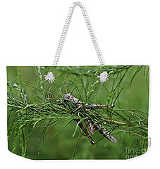 Weekender Tote Bag featuring the photograph Grasshopper by Olga Hamilton