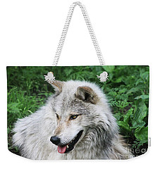 Gray Wolf Weekender Tote Bag by Alyce Taylor