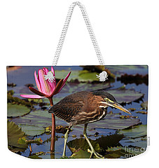 Green Heron Photo Weekender Tote Bag by Meg Rousher