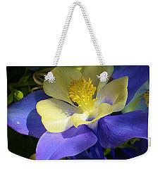 Hidden Treasure Weekender Tote Bag by Bruce Bley