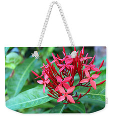 Jamaican Red Weekender Tote Bag
