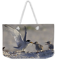 Least Tern Feeding It's Young Weekender Tote Bag by Meg Rousher