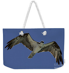 Weekender Tote Bag featuring the photograph Osprey In Flight Photo by Meg Rousher