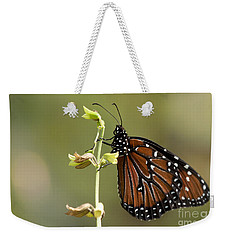 Weekender Tote Bag featuring the photograph Queen Butterfly by Meg Rousher