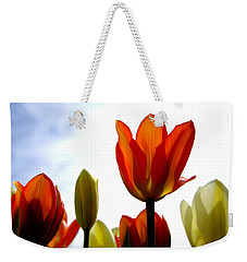 Weekender Tote Bag featuring the photograph Reaching For The Sun by Marilyn Wilson