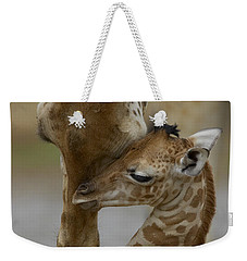 Weekender Tote Bag featuring the photograph Rothschild Giraffe And Calf by San Diego Zoo