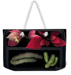 2 Seasons Weekender Tote Bag