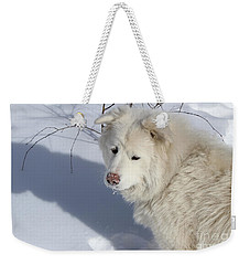 Snowy Nose Weekender Tote Bag by Fiona Kennard