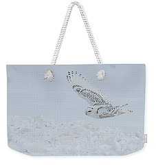 Weekender Tote Bag featuring the photograph Snowy Owl #2/3 by Patti Deters