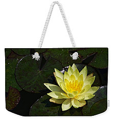 Soaking Up The Sun Weekender Tote Bag by Dave Files