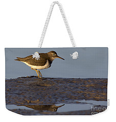 Spotted Sandpiper Reflection Weekender Tote Bag