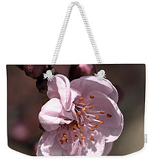 Weekender Tote Bag featuring the photograph Spring Blossom by Joy Watson