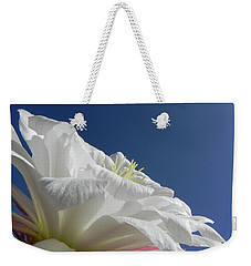 Weekender Tote Bag featuring the photograph Striking Contrast by Deb Halloran