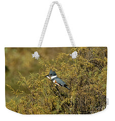 Belted Kingfisher With Fish Weekender Tote Bag by Anthony Mercieca