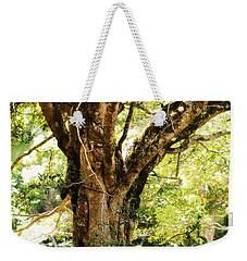 Kingdom Of The Trees. Peradeniya Botanical Garden. Sri Lanka Weekender Tote Bag