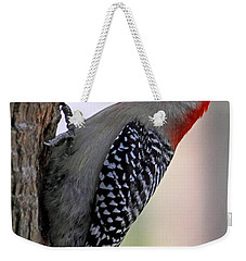 Weekender Tote Bag featuring the photograph Red Bellied Woodpecker  by Meg Rousher