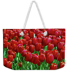 Weekender Tote Bag featuring the photograph Red Tulips  by Allen Beatty