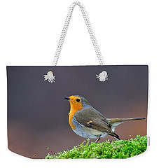 Weekender Tote Bag featuring the photograph Robin by Gavin Macrae