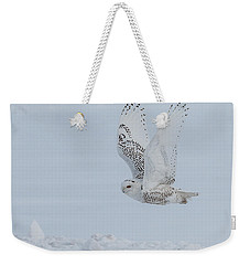 Weekender Tote Bag featuring the photograph Snowy Owl #3/3 by Patti Deters
