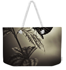 Butterfly Brown Tone Weekender Tote Bag