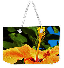 Weekender Tote Bag featuring the photograph Untouched Beauty by Faith Williams