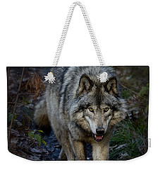 Timber Wolf Weekender Tote Bag