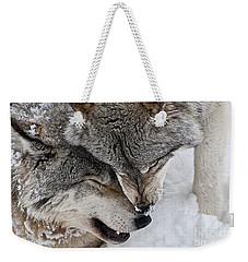 Timber Wolf Pictures Weekender Tote Bag by Wolves Only