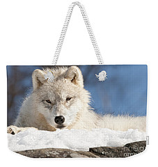 Arctic Wolf Pup Weekender Tote Bag