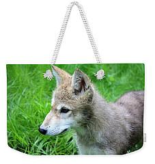 Gray Wolf Pup Weekender Tote Bag